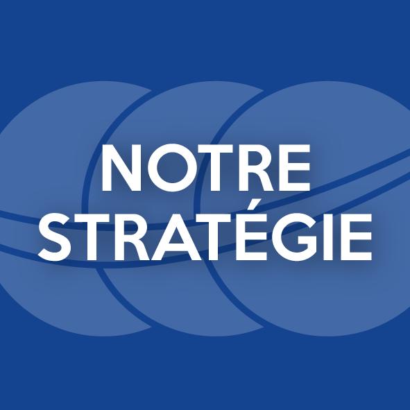 blocs_accueil_bleu_strategie