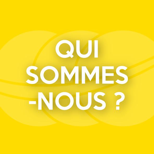 blocs_accueil_jaune_qui